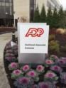 ADP thumbnail